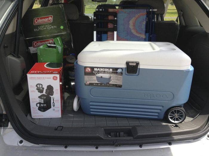 Store Cooler and Food in the Car