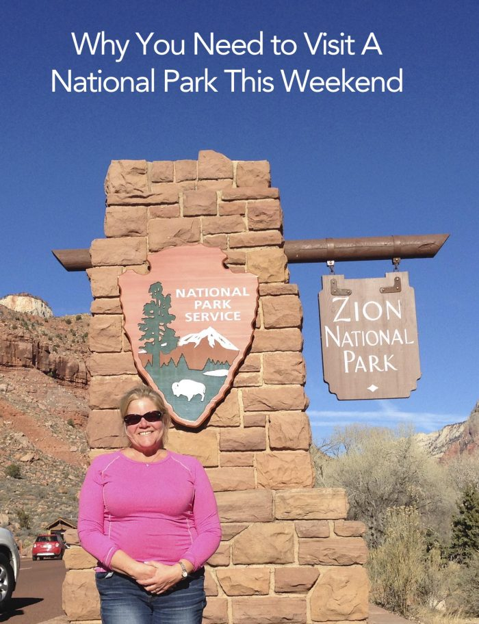 Zion-National-Park copy